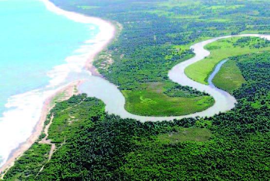 Tropical River Tour